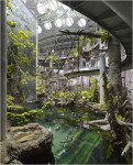 Inside the rainforest sphere